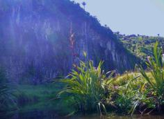 Sandhill Creek 1