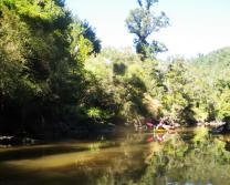Wairoa River 3