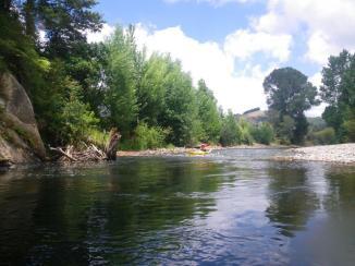 Waiwawa River 5