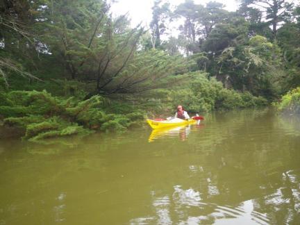Weiti River 1