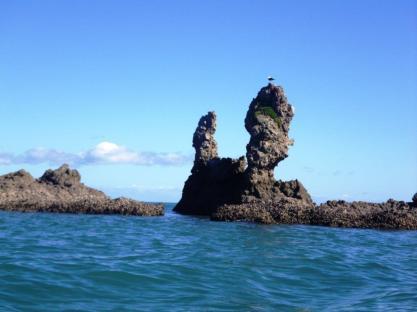 Whanganui Island 1