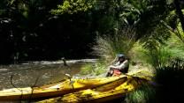 wairoa-river-lunch