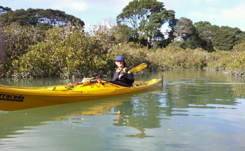 Whau River and Wairau Creek