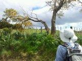 wpid-2012-09-29-10.26.24.jpg
