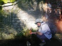 wpid-Glastonbury-Challice-well.jpg