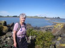 wpid-puketutu-island-view-of-ambury-stonefields.jpg.jpeg