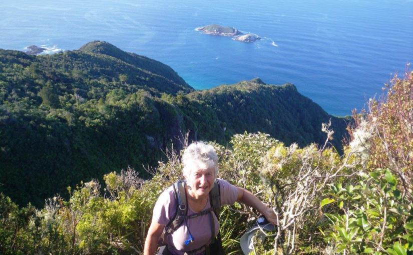 Bream Head Te Whara track