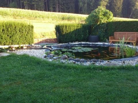 oase teich teichumbau: vom tümpel zur oase im garten   oase-teichbau.de