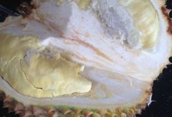 "Makan Durian Rp 60.000 Sepuasnya Di ""Festival Gila Durian"" Depok"