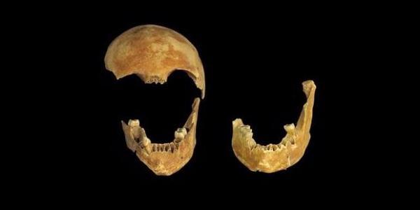 Temuan Tulang Ungkap Kriminalitas di Zaman Batu - Kompas.com