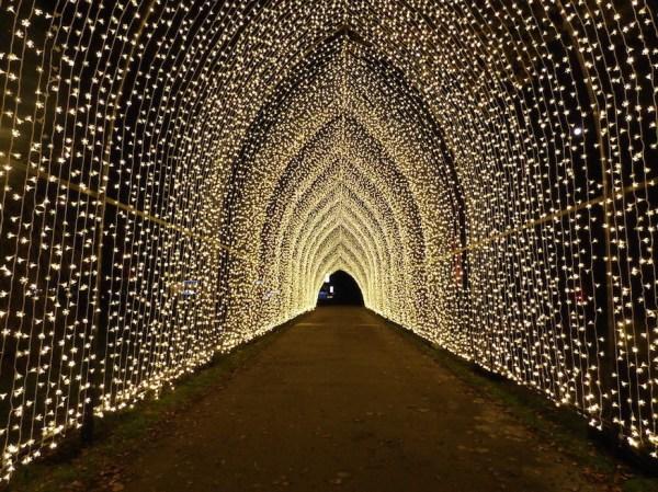 christmas lights london 2019 # 60