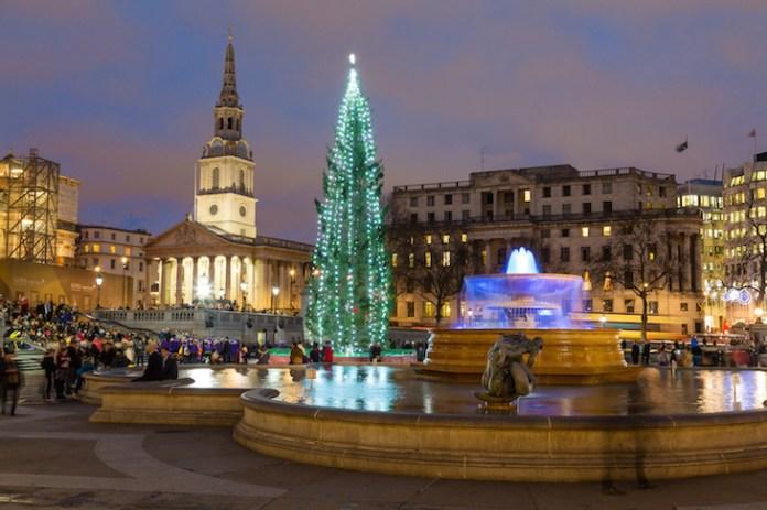 Lights on the Trafalgar Square Christmas tree, London