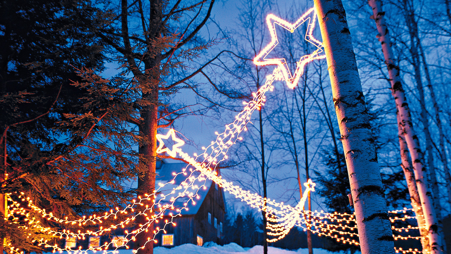 Outdoor Lighting Shooting Stars Martha Stewart