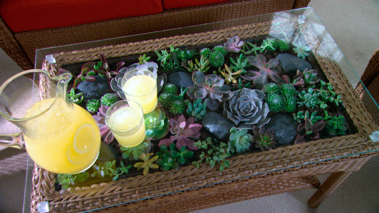Video Learn Amp Do How To Make A Terrarium Coffee Table