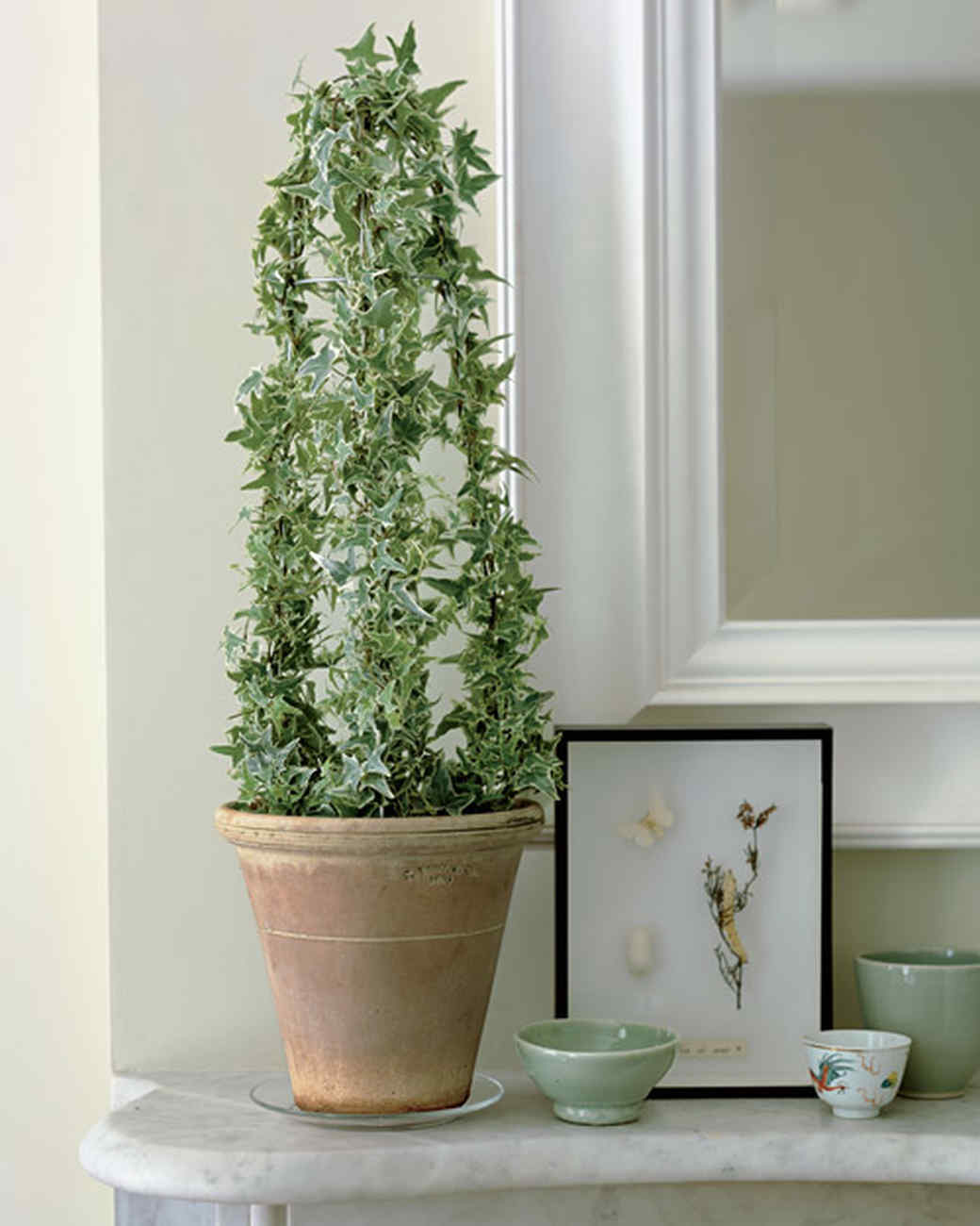 Hanging Plant Pots Outdoor