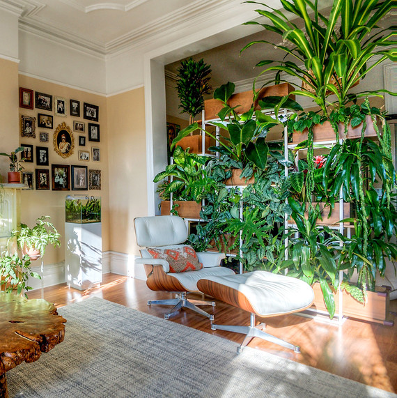 Indoor Window Hanging Planter