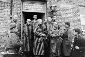 Remembering and leaning from the 75th Anniversary of the liberation of Auschwitz death camp