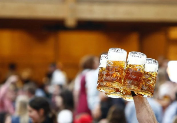 Limit alcohol for preventing leaky gut