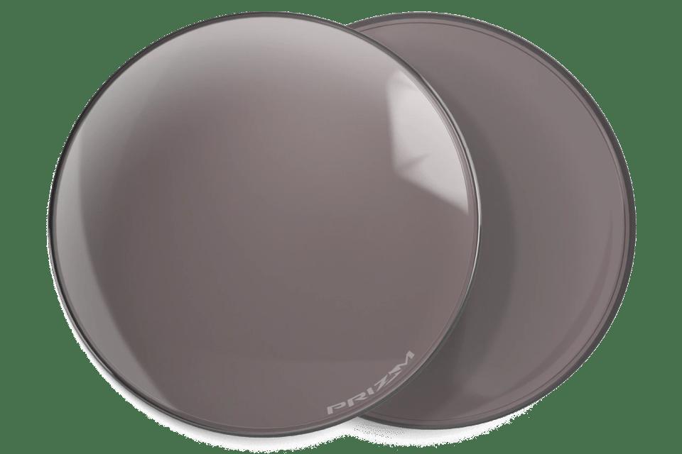 Prizm Grey Polarized