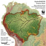 About The Amazon Wwf