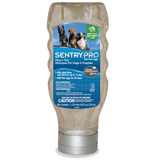sentry pro flea tick shampoo for dogs and puppies 18 fl oz