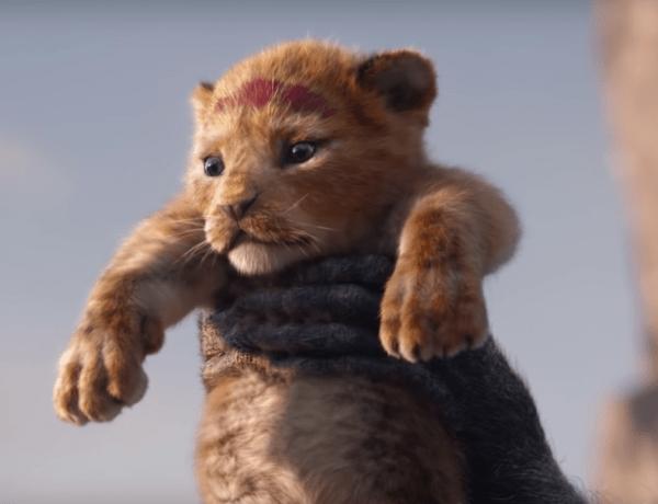 Découvrez Bahati, le lionceau qui a inspiré Simba dans le Roi Lion