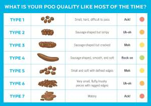 6 reasons you should care about your poop health Are your