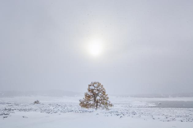 Как снимать на улице в холодное время года