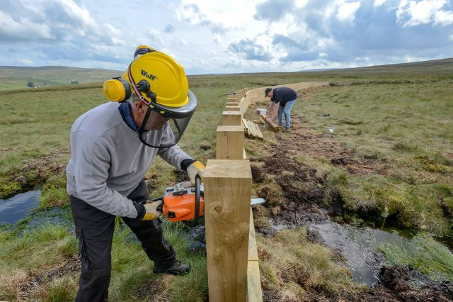 Image shows construction taking place on one of the timber fences