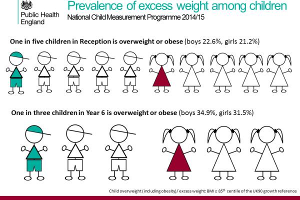 Childhood obesity worldwide    Effect.manicurex.ru
