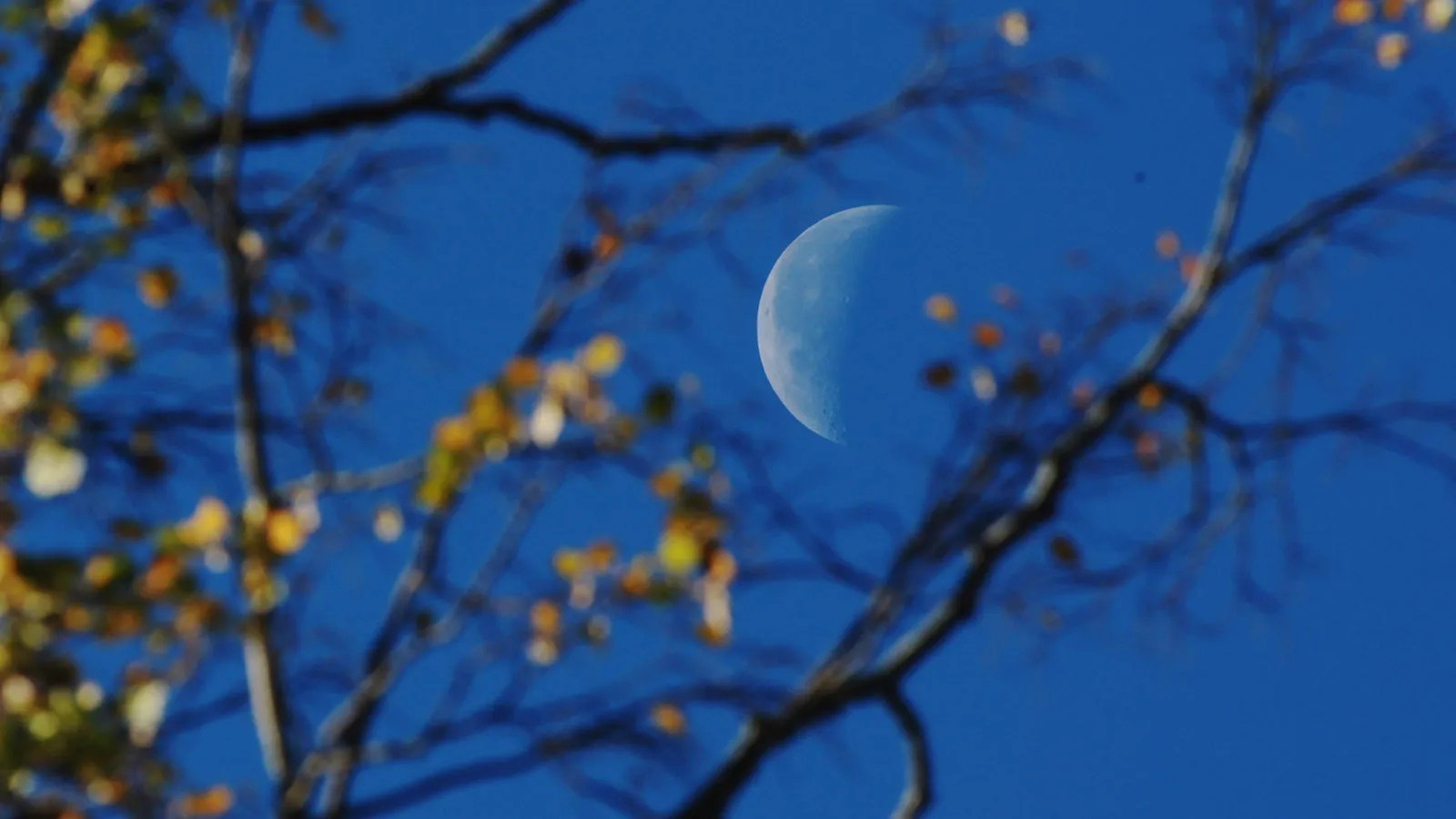 Eastern time on wednesday, october 20. March 31 is the last blue moon until Halloween 2020—so look up! - Big Think
