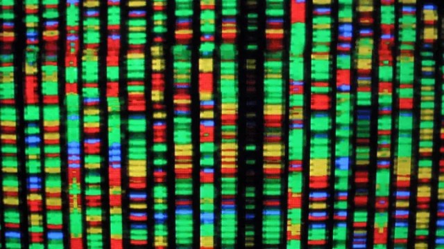 A colorful representation of DNA