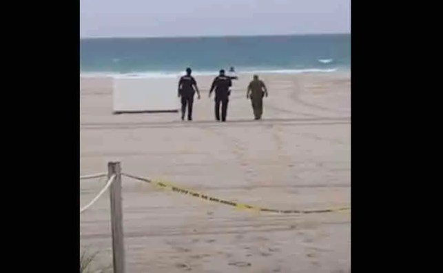Woman holding 'We Are Free' sign while sitting on beach dragged away by cops: ​'This is a power trip. This has nothing to do with the virus.'