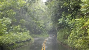 Heavy rain in Hawaii prompts a state of emergency