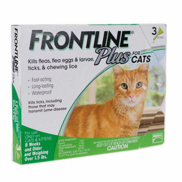 Most Effective Way To Get Rid Of Fleas On Cats