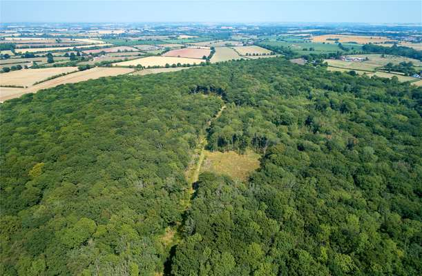 The average price of natural forestland for sale in minnesota was $353,264. Savills Bascote Heath Southam Warwickshire Cv47 2dn Property For Sale