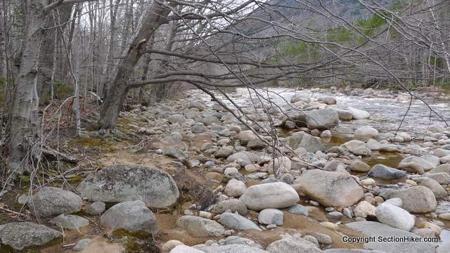It can be easier to walk on the rocks along the edge of a river than in the vegetation running besides it.