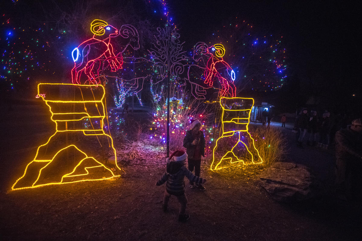 denver holiday lights featured events
