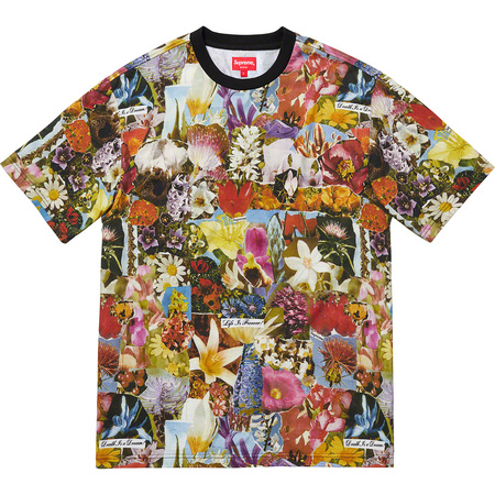 Dream S/S Top (Multicolor)