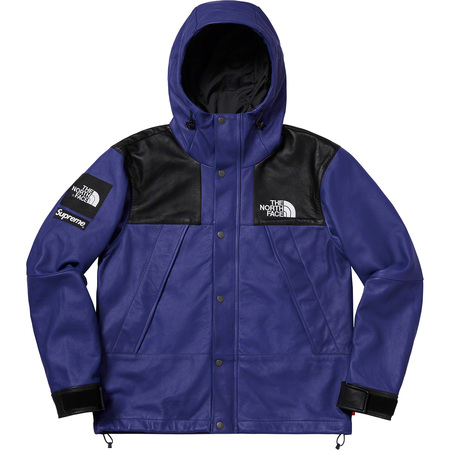 Supreme®/The North Face® Leather Mountain Parka (Royal)