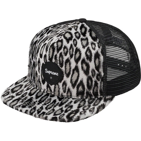 Leopard Mesh Back 5-Panel (Black)