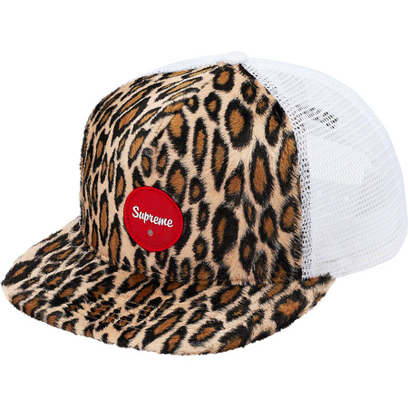 Leopard Mesh Back 5-Panel (White)