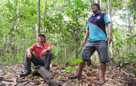 Olimpio and Franciel, coordinators of the Guajajara Guardians, are determined to protect the forest for their uncontacted Awá neighbors.