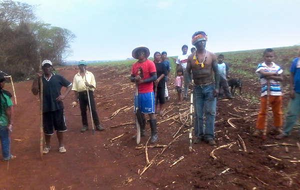 La comunità guarani di Apy Ka'y è tornata alla sua terra ancestrale, occupata da una piantagione di canna da zucchero, nonostante le minacce di morte di uomini armati.
