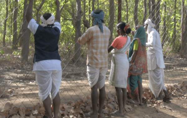 Victimes de violentes expulsions, les Baiga ne peuvent retourner chez eux.