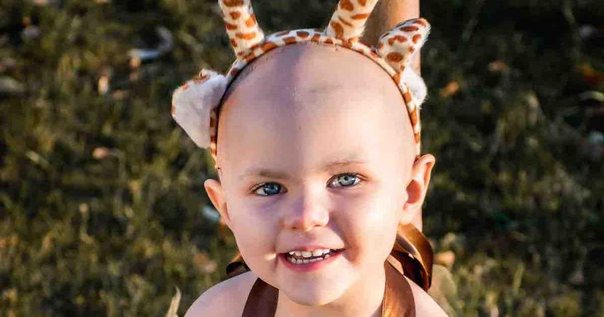 """TT :  Des millions de personnes sont tombées amoureuses d'un guerrier du cancer âgé de 17 mois """"Little , influenceur"""