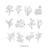 In Every Season Clear-Mount Stamp Set