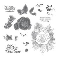 Christmas Rose Stamp Set (English)