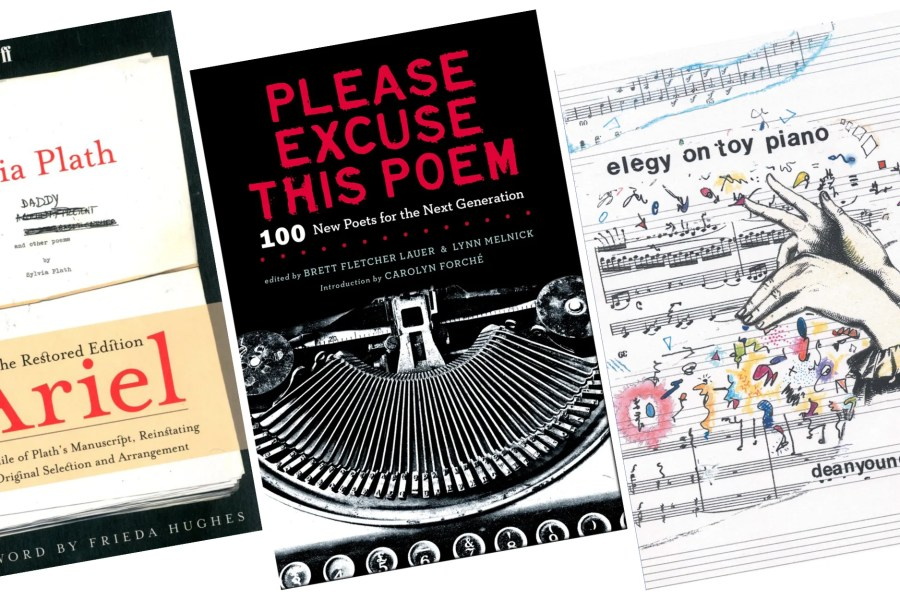 Best Poetry Books     9 Stunning Poetry Books You Should Read At Least     April is National Poetry Month  and to celebrate  we put together a list of  some of our favorite novels in verse and collections of poems