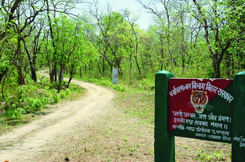 This website also highlights the initiatives taken by revenue and forest department in. Rhinos To Return To Valmiki Forests Survey Done Forest Department Ready Telegraph India